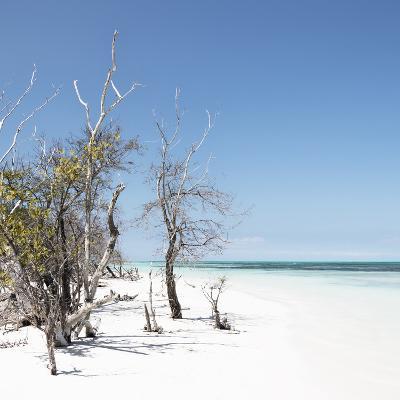 Cuba Fuerte Collection SQ - Sandy Beach Pastel Blue-Philippe Hugonnard-Photographic Print