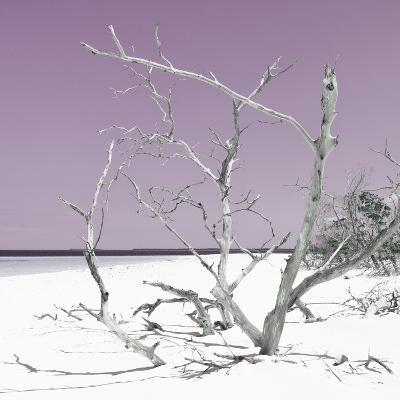 Cuba Fuerte Collection SQ - Tropical Beach Nature - Pastel Plum-Philippe Hugonnard-Photographic Print