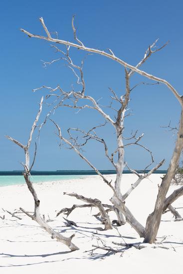 Cuba Fuerte Collection - Tropical Beach Nature II-Philippe Hugonnard-Photographic Print