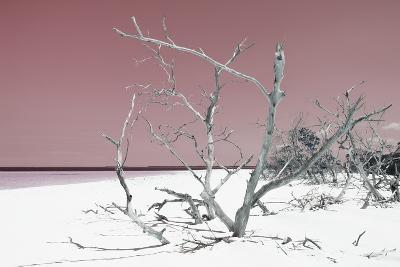 Cuba Fuerte Collection - Tropical Beach Nature - Pastel Red-Philippe Hugonnard-Photographic Print