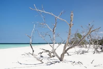 Cuba Fuerte Collection - Tropical Beach Nature-Philippe Hugonnard-Photographic Print