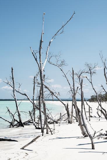 Cuba Fuerte Collection - Tropical Wild Beach III-Philippe Hugonnard-Photographic Print