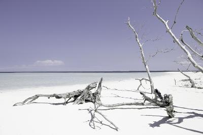 Cuba Fuerte Collection - Wild Purple Lagoon-Philippe Hugonnard-Photographic Print