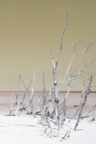 Cuba Fuerte Collection - Wild White Sand Beach III - Pastel Dark Yellow-Philippe Hugonnard-Photographic Print