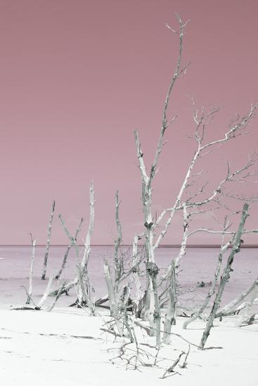 Cuba Fuerte Collection - Wild White Sand Beach III - Pastel Pink-Philippe Hugonnard-Photographic Print