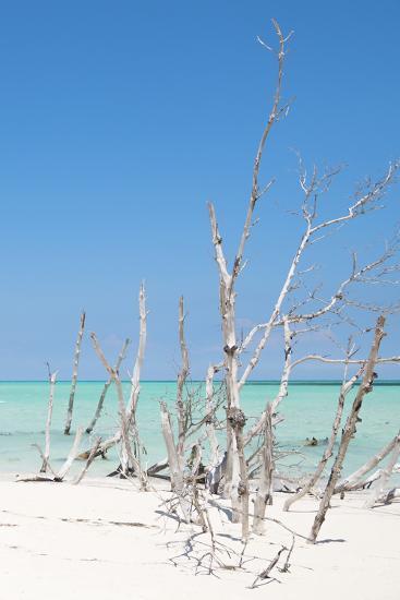 Cuba Fuerte Collection - Wild White Sand Beach III-Philippe Hugonnard-Photographic Print