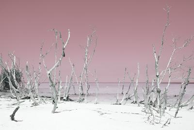 Cuba Fuerte Collection - Wild White Sand Beach - Pastel Pink-Philippe Hugonnard-Photographic Print