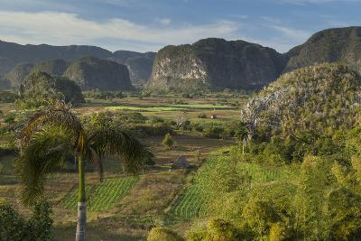 Cuba, Vinales. a View Looking over the Rich Farmland of the Valley-Brenda Tharp-Photographic Print