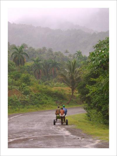 Cuban Landscape-Charles Glover-Giclee Print