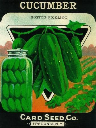 https://imgc.artprintimages.com/img/print/cucumber-seed-packet_u-l-q1go36y0.jpg?p=0