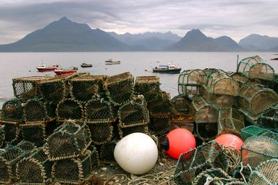Cuillin Hills from Elgol, Isle of Skye, Highland, Scotland-Peter Thompson-Photographic Print