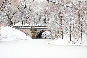 Bridge over Lake in Central Park in Winter, Manhattan, New York City, USA by Cultura Travel/Karen Fox