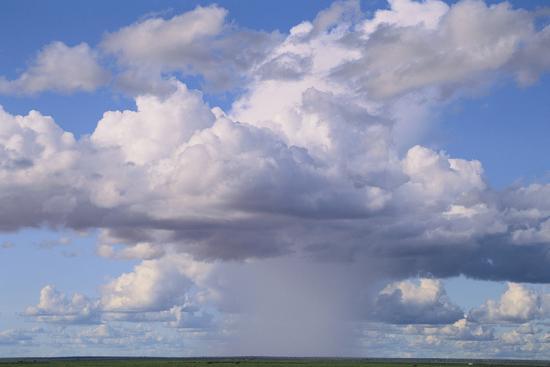Cumulus Clouds Forming a Rainstorm-DLILLC-Photographic Print