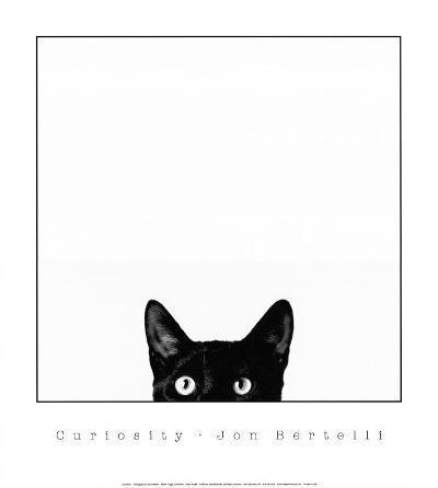 Curiosity-Jon Bertelli-Art Print
