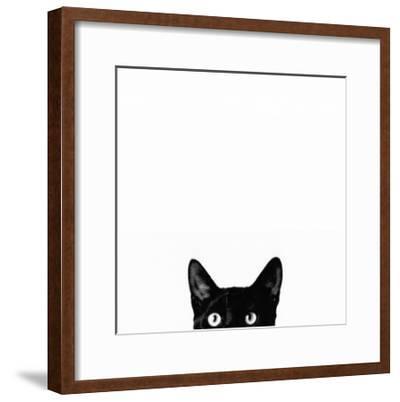 Curiosity-Jon Bertelli-Framed Art Print