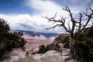 Grand Canyon National Park, Arizona by Curioso Travel Photography