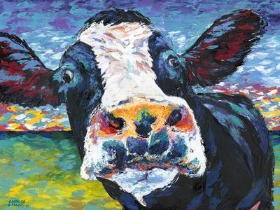 https://imgc.artprintimages.com/img/print/curious-cow-ii_u-l-q11aj2e0.jpg?artPerspective=n