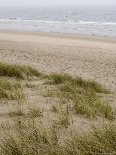 Curracloe Beach, County Wexford, Leinster, Republic of Ireland (Eire)-Sergio Pitamitz-Photographic Print