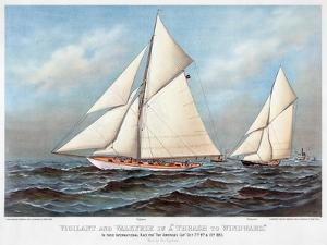 America's Cup, 1883 by Currier & Ives