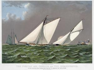 America's Cup, 1885 by Currier & Ives