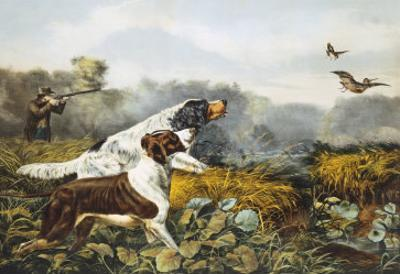 American Field Sports, a Chance For Both Barrels by Currier & Ives