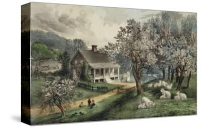 American Homestead Spring
