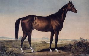 Lexington, The Celebrated Horse by Currier & Ives
