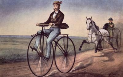 The (Bicycle) Velocipede