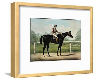 The Great Racer Kingston