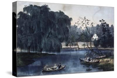The Rural Lake