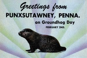 Greetings From Punxsutawney, Penna On Groundhog Day by Curt Teich & Company