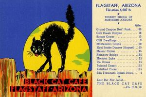 The Black Cat Café by Curt Teich & Company