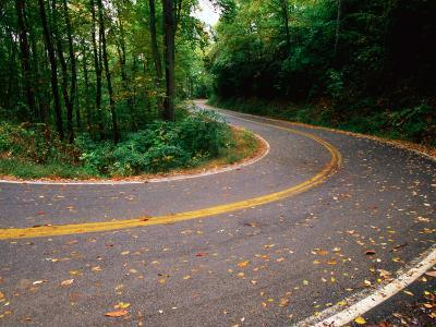 Curve in Road of Highway 32, Great Smoky Mountains National Park, Tennessee-John Elk III-Photographic Print