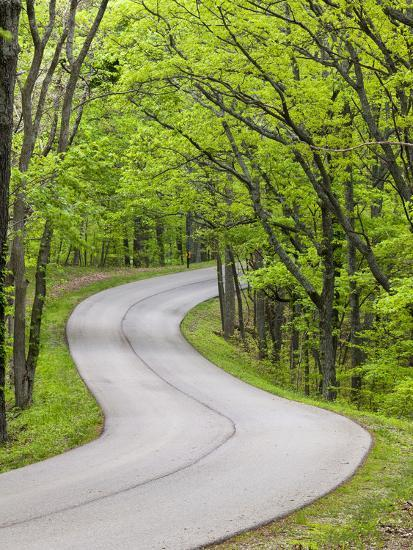 Curvy Roadway under Spring Green Canopy at Brown County State Park in Indiana, Usa-Chuck Haney-Photographic Print