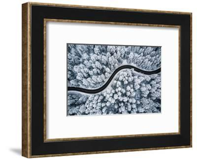 Curvy Windy Road in Snow Covered Forest, Top down Aerial View.--Framed Photographic Print