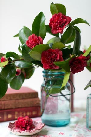 https://imgc.artprintimages.com/img/print/cut-blossoms-of-red-camellia-in-blue-jars-with-vintage-books-in-front-of-a-window_u-l-q13f6i60.jpg?p=0