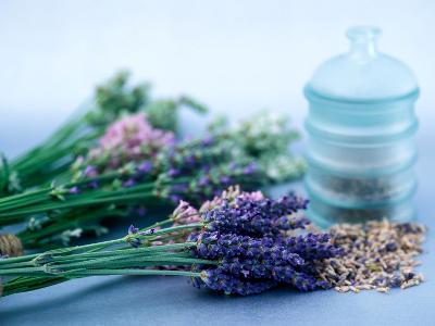 Cut Lavender, Dried Lavender & Glass Pot-Lynn Keddie-Photographic Print