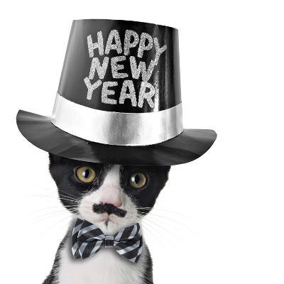 Cute Black and White Kitten with Moustache, Bow Tie and Happy New Year Hat-Hannamariah-Photographic Print