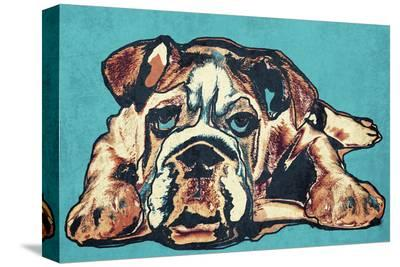 Cute Bulldog--Stretched Canvas Print