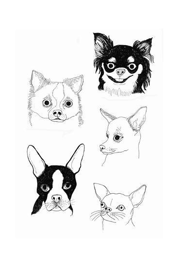 Cutie Poochie-Jennifer Camilleri-Giclee Print