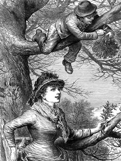 Cutting the Mistletoe Bough for Christmas Decoration, 1886--Giclee Print