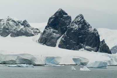 Cuverville Island, Antarctica-Natalie Tepper-Photo