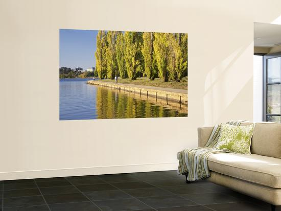 Cyclist and Autumn Poplar Trees in Lennox Gardens Reflected in Lake Burley Griffin-David Wall-Wall Mural