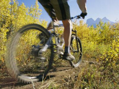 Cyclist Rides Mountain Bike Among Trees with Autumn Foliage-Mark Cosslett-Photographic Print
