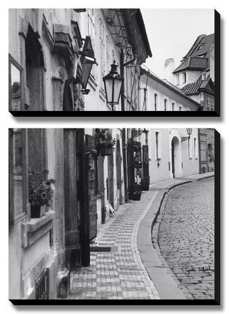 Beautiful Prague, Czech Republic by Cyndi Schick