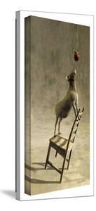 Cynthia Decker 'Equilibrium I' Gallery Wrapped Canvas by Cynthia Decker