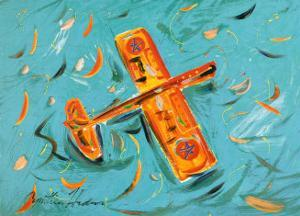 Airplane by Cynthia Hudson