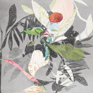 Noto by Cynthia MacCollum