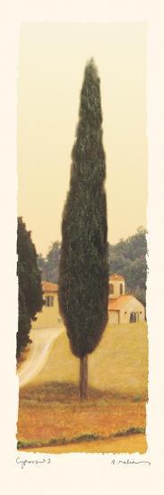 Cypress I-Amy Melious-Art Print