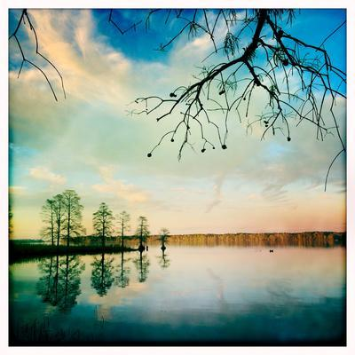 https://imgc.artprintimages.com/img/print/cypress-trees-and-cloud-reflections-in-the-calm-water-of-the-chickahominy-river_u-l-pswl2c0.jpg?p=0